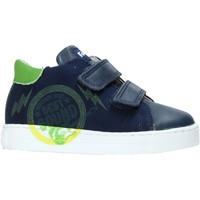 Cipők Gyerek Rövid szárú edzőcipők Falcotto 2013622-01-1C38 Kék