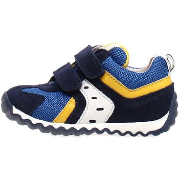 Cipők Gyerek Rövid szárú edzőcipők Naturino 2013741-01-1C81 Kék