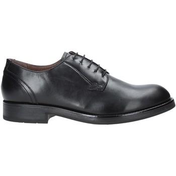 Cipők Férfi Oxford cipők Nero Giardini A901110U Fekete