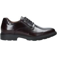 Cipők Férfi Oxford cipők Nero Giardini A901141U Piros