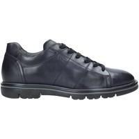 Cipők Férfi Rövid szárú edzőcipők Nero Giardini A901160U Kék