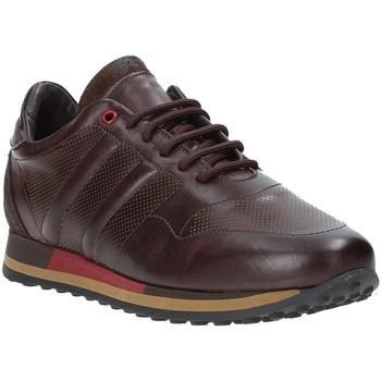 Cipők Férfi Rövid szárú edzőcipők Exton 246 Barna