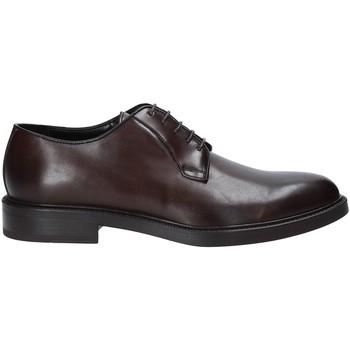Cipők Férfi Oxford cipők Rogers 1019_4 Barna