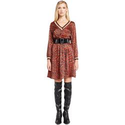 Ruhák Női Rövid ruhák Denny Rose 921ND15008 Piros