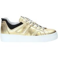 Cipők Női Rövid szárú edzőcipők Nero Giardini A909160D Arany