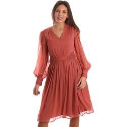 Ruhák Női Rövid ruhák Fracomina FR19FMREMI Rózsaszín