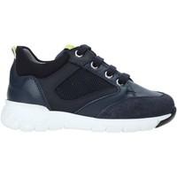 Cipők Gyerek Rövid szárú edzőcipők NeroGiardini A923730M Kék