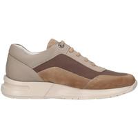 Cipők Férfi Rövid szárú edzőcipők CallagHan 91311 Bézs