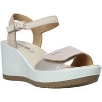 Cipők Női Szandálok / Saruk IgI&CO 5179400 Bézs