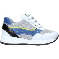 Cipők Gyerek Rövid szárú edzőcipők Nero Giardini E023820M Fehér