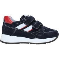 Cipők Gyerek Rövid szárú edzőcipők Nero Giardini E023830M Kék