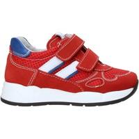 Cipők Gyerek Rövid szárú edzőcipők Nero Giardini E023830M Piros