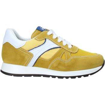 Cipők Gyerek Rövid szárú edzőcipők Nero Giardini E033800M Sárga