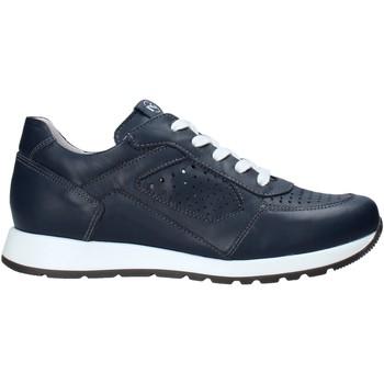 Cipők Gyerek Rövid szárú edzőcipők Nero Giardini E033810M Kék