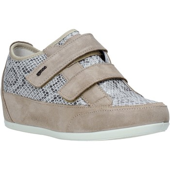 Cipők Női Rövid szárú edzőcipők IgI&CO 5169511 Bézs