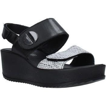 Cipők Női Szandálok / Saruk IgI&CO 5178200 Fekete