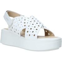 Cipők Női Szandálok / Saruk Impronte IL01525A Fehér