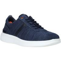 Cipők Férfi Rövid szárú edzőcipők Impronte IM01023A Kék