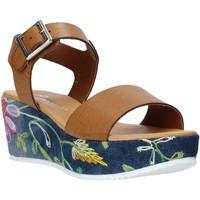 Cipők Női Szandálok / Saruk Grace Shoes 02 Barna
