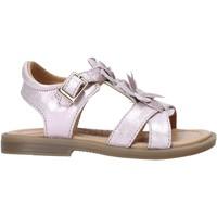 Cipők Lány Szandálok / Saruk Grunland PS0062 Rózsaszín