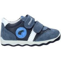 Cipők Gyerek Rövid szárú edzőcipők Primigi 5352922 Kék
