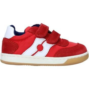 Cipők Gyerek Rövid szárú edzőcipők Falcotto 2014666 01 Piros