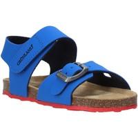 Cipők Gyerek Szandálok / Saruk Grunland SB0372 Kék