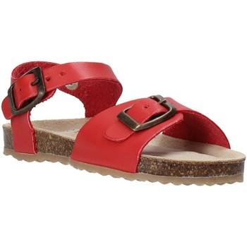 Cipők Gyerek Szandálok / Saruk Grunland SB1551 Piros