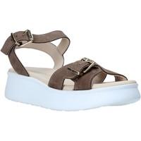 Cipők Női Szandálok / Saruk Lumberjack SW83306 002 D01 Bézs