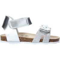 Cipők Lány Szandálok / Saruk Grunland SB1545 Ezüst