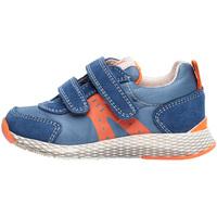 Cipők Gyerek Rövid szárú edzőcipők Naturino 2014902 01 Kék