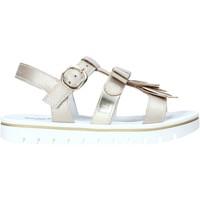 Cipők Lány Szandálok / Saruk Nero Giardini E031617F Mások