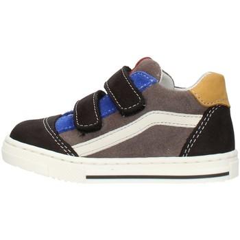 Cipők Fiú Rövid szárú edzőcipők Balocchi 602211 Multicolored