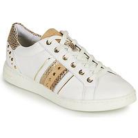Cipők Női Rövid szárú edzőcipők Geox D JAYSEN A Fehér / Arany