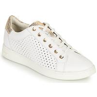 Cipők Női Rövid szárú edzőcipők Geox D JAYSEN B Fehér / Arany