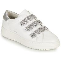 Cipők Női Rövid szárú edzőcipők Geox D PONTOISE C Fehér / Ezüst