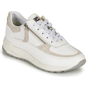 Cipők Női Rövid szárú edzőcipők Geox D AIRELL A Fehér / Bézs