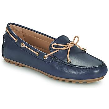 Cipők Női Mokkaszínek Geox D LEELYAN C Kék / Bézs