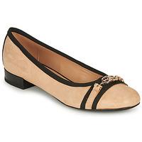 Cipők Női Balerina cipők  Geox D WISTREY D Bézs / Fekete