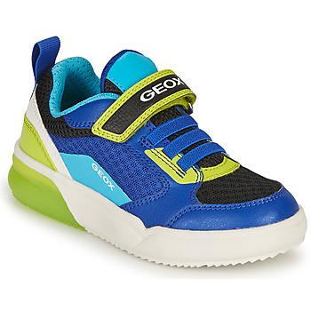 Cipők Fiú Rövid szárú edzőcipők Geox GRAYJAY BOY Kék / Lime