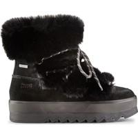 Cipők Női Bokacsizmák Cougar Vanity Suede 38
