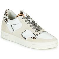 Cipők Női Rövid szárú edzőcipők Mam'Zelle ARTIX Fehér / Leopárd
