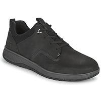 Cipők Férfi Rövid szárú edzőcipők Caterpillar TITUS Fekete