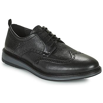 Cipők Férfi Oxford cipők Clarks CHANTRY WING Fekete