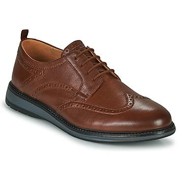Cipők Férfi Oxford cipők Clarks CHANTRY WING Barna