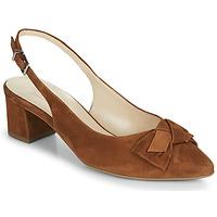 Cipők Női Félcipők Peter Kaiser SHANIA Teve