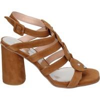 Cipők Női Szandálok / Saruk Sergio Cimadamore BK866 Barna
