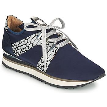 Cipők Női Rövid szárú edzőcipők Adige XAN V4 KOI SILVER Kék