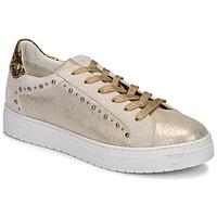 Cipők Női Rövid szárú edzőcipők Regard HAVRES Arany
