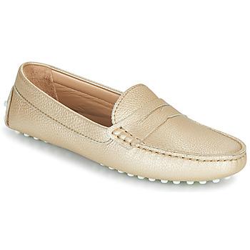 Cipők Női Balerina cipők  JB Martin 1TABATA Arany